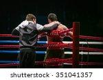 mixed martial arts fighter  mma ...   Shutterstock . vector #351041357