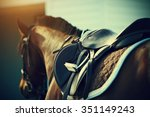 saddle with stirrups on a back... | Shutterstock . vector #351149243