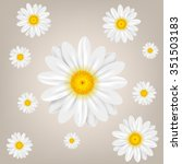Chamomile. Background With...