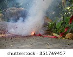 firecrackers  burnt... | Shutterstock . vector #351769457