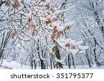 fairytale winter background... | Shutterstock . vector #351795377