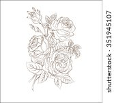 roses on a white background ... | Shutterstock .eps vector #351945107
