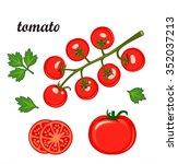 red ripe tomatoes vector... | Shutterstock .eps vector #352037213