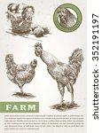 poultry breeding. set of... | Shutterstock .eps vector #352191197