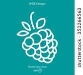 web line icon. raspberries | Shutterstock .eps vector #352266563