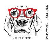 Portrait Of A Dog Labrador In...