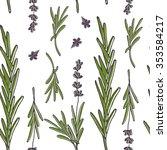 fresh lavender hand drawn... | Shutterstock .eps vector #353584217