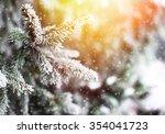 White Snow On Fir Branch In...