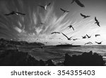 many seagulls black and white ... | Shutterstock . vector #354355403