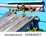 bee hive with bees on it | Shutterstock . vector #354848357