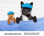 sick ill french bulldog dog ... | Shutterstock . vector #355139237