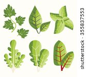 salad  greens. vector set | Shutterstock .eps vector #355837553