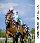 Stock photo thoroughbreds racing for the finish 356168327
