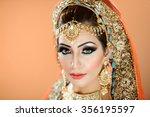 portrait of a beautiful female... | Shutterstock . vector #356195597
