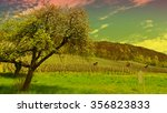 flowering tree and young... | Shutterstock . vector #356823833