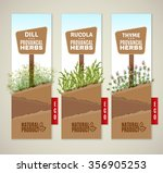 the set of three vertical... | Shutterstock .eps vector #356905253