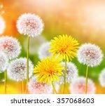 wildflowers dandelions. spring... | Shutterstock . vector #357068603