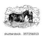 sketch of girl and horse in the ... | Shutterstock .eps vector #357256013