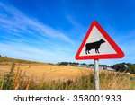 Waring Sign For Cow In  The...