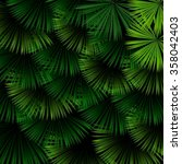 exotic pattern with tropical... | Shutterstock . vector #358042403