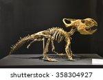 Skeleton Of Dinosaur...