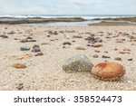 Small Rocks Scattered On Beach...