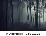 light and shadow in the forest | Shutterstock . vector #35861221