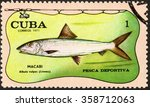 """Small photo of MOSCOW, RUSSIA - DECEMBER, 2015: a post stamp printed in CUBA shows a fish with the inscription MACABI albula vulpes (Linneo), the series """"Sport Fishing"""", circa 1971"""