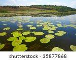 danube delta landscape   Shutterstock . vector #35877868