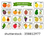 collection of cards with fruits ... | Shutterstock .eps vector #358812977