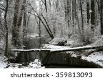 Snowy Creek In Forest