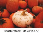 Pinkish White Novelty Pumpkin...