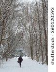 A Boy Walking In Beltline Trai...
