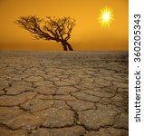 life ecology solitude concept   ...   Shutterstock . vector #360205343