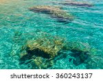 View Of The Underwater Stones...