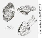 vector meat hand drawn... | Shutterstock .eps vector #360297017
