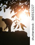 Small photo of Labour man with hard tool moil pick-axe working at deconstructing of building male physical job outdoors on natural background of silhouette of branch chestnut tree and bright sunbeam, vertical photo