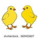 two small chicken on a white... | Shutterstock .eps vector #360403607