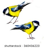 watercolor tits   Shutterstock . vector #360436223