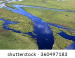 aerial view of fish eating... | Shutterstock . vector #360497183