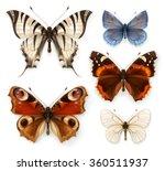 butterflies  vector icons set