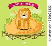 Vector Zoo Animal  Lion. Vecto...