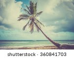Palm Tree Over Caribbean Sea I...