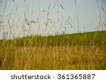 Small photo of field with a eminence
