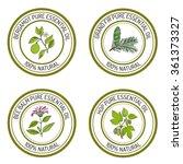 set of essential oil labels ... | Shutterstock .eps vector #361373327