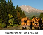 Logging trucks beneath majestic Mount Shasta - stock photo