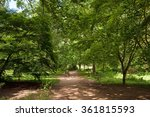 among'st the trees | Shutterstock . vector #361815593