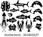 monochrome vector set of... | Shutterstock .eps vector #361862627