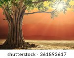 roots of one big tree with... | Shutterstock . vector #361893617