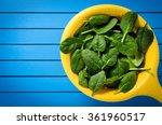 fresh spinach in yellow colander | Shutterstock . vector #361960517